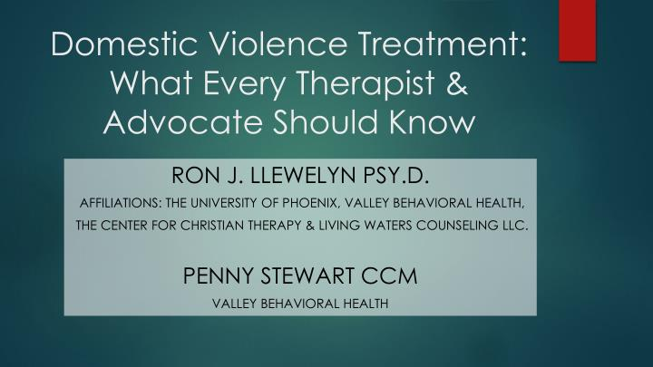 domestic violence treatment what every therapist advocate should know n.