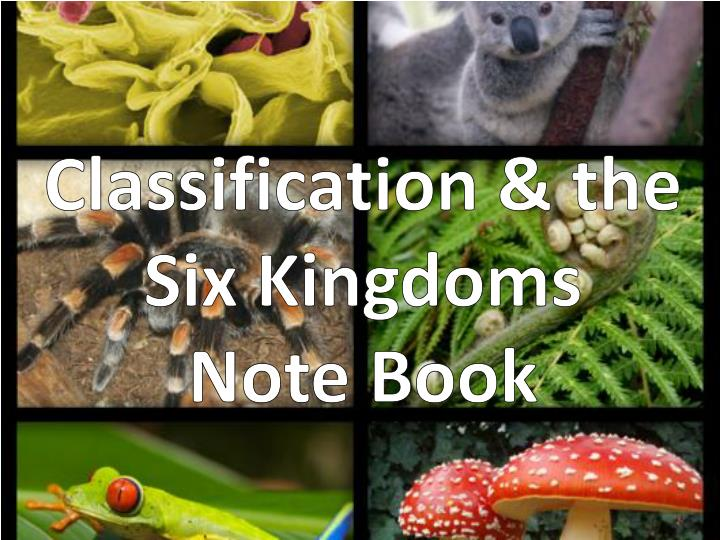 classification the six kingdoms note book n.