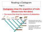 reading a cladogram page 4