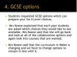 4 gcse options
