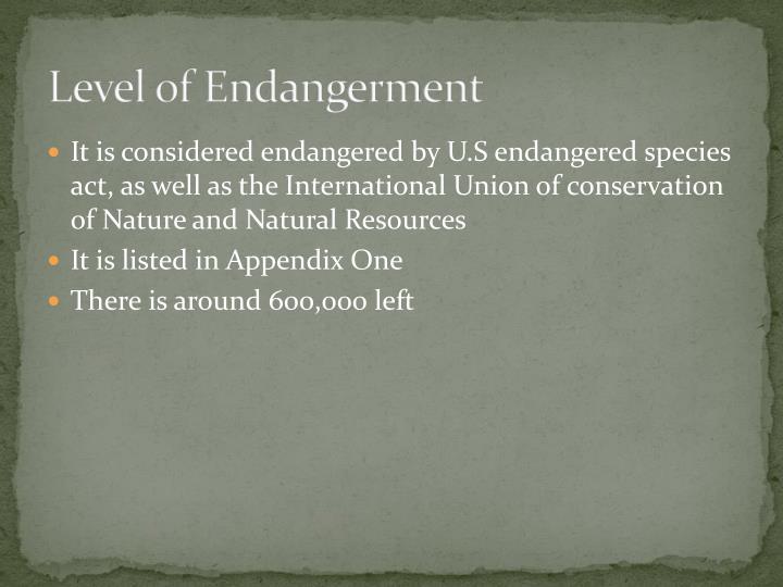 Level of Endangerment