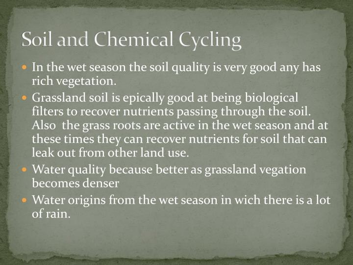 Soil and