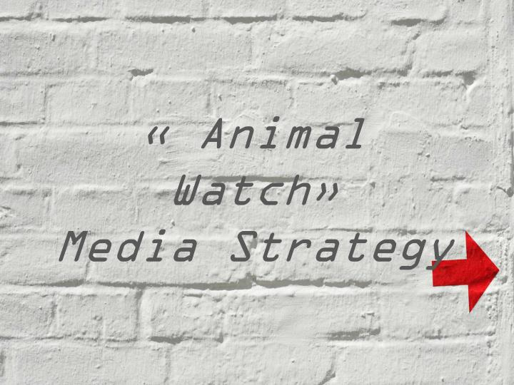 animal watch media strategy n.