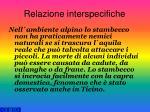 relazione interspecifiche