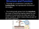 structure and function2