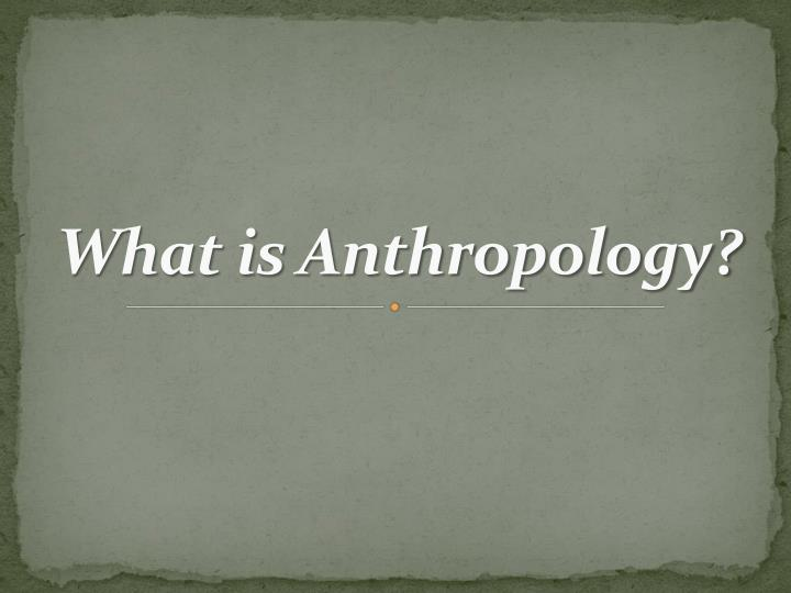 what is anthropology n.