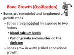 bone growth ossification1