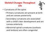 skeletal changes throughout life2