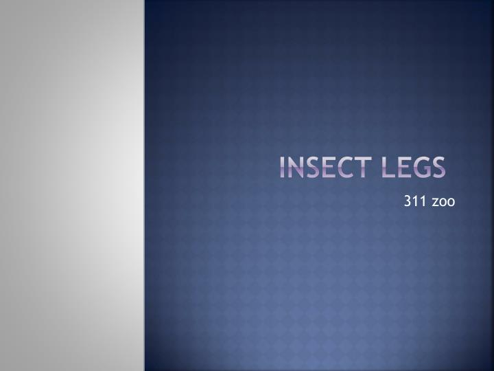 Insect legs