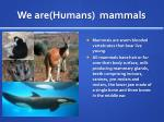 we are humans mammals