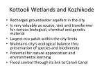 kottooli wetlands and kozhikode