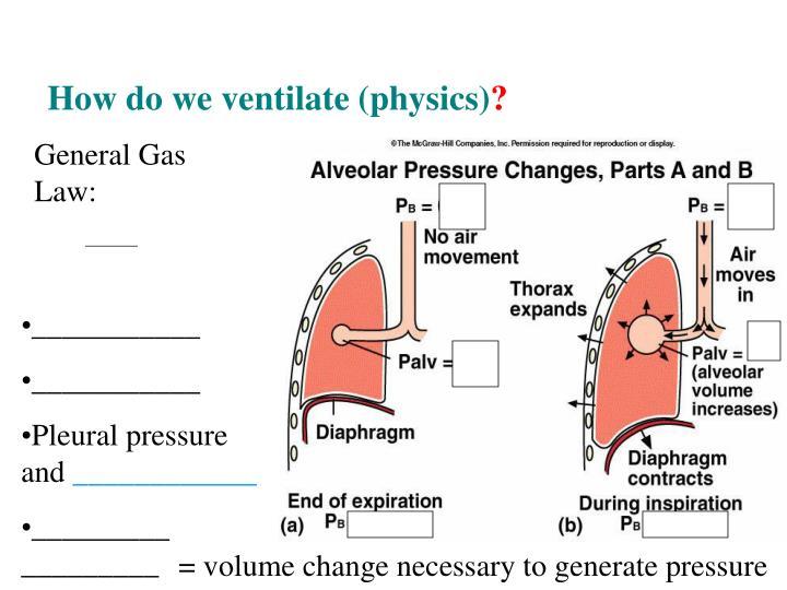 General Gas Law:
