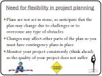 n eed for flexibility in project planning