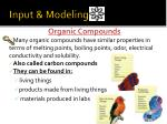 input modeling