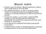 blosum matrix