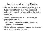 nucleic acid scoring matrix