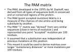 the pam matrix