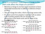 what is a mutation how does a change in the dna code affect the shape of a protein