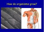 how do organisms grow2