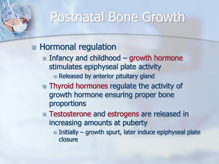 Postnatal Bone Growth