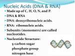 nucleic acids dna rna