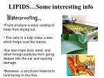 lipids some interesting info