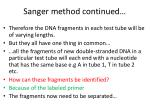 sanger method continued2