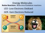 energy molecules1