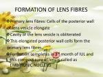 formation of lens fibres