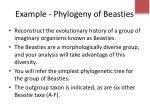 example phylogeny of beasties