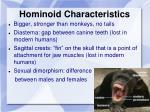 hominoid characteristics