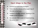 next steps in the plan
