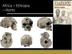africa ethiopia herto1