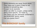 the brinclhof family