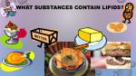 what substances contain lipids