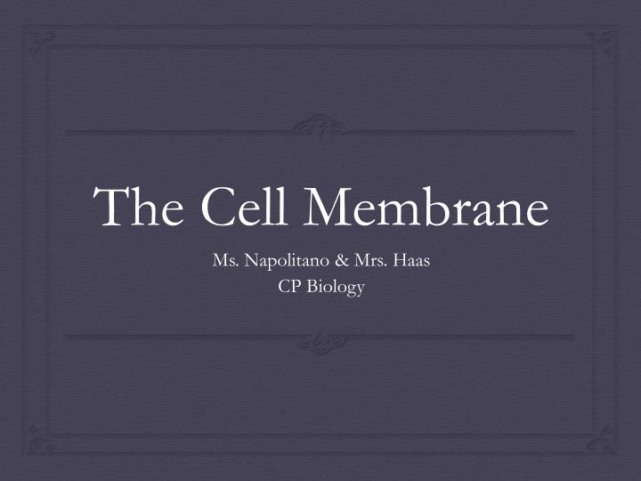 the cell membrane n.