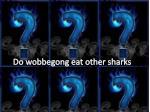 do wobbegong eat other sharks