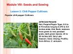 module viii seeds and sowing12