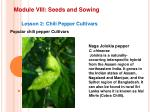 module viii seeds and sowing14