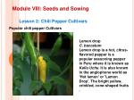 module viii seeds and sowing15