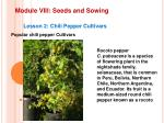 module viii seeds and sowing16