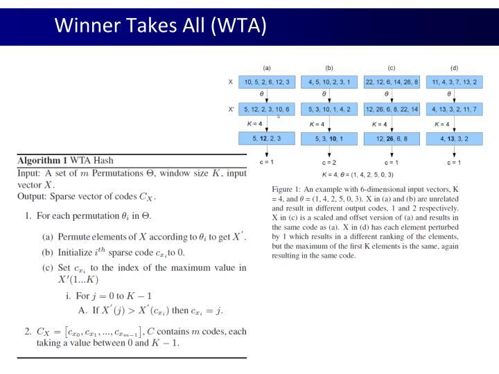 Winner Takes All (WTA)
