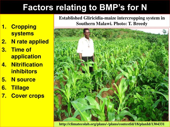 Factors relating to BMP's for N