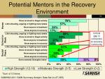 potential mentors in the recovery environment
