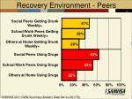 recovery environment peers