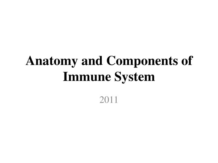 anatomy and components of immune system n.