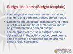 budget line items budget template