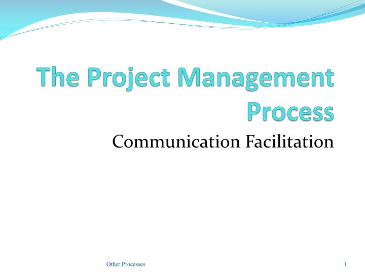 the project management process n.