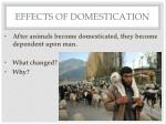 effects of domestication