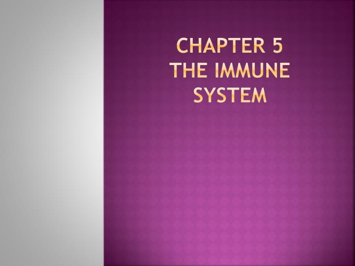 chapter 5 the immune system n.